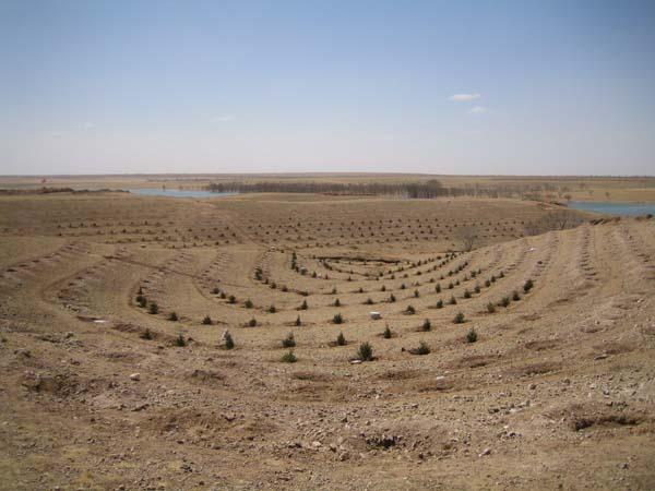 """森林破壊 """"> 森林破壊 森林破壊と植林 おいらは、あるNGOの団体の植林のツア"""